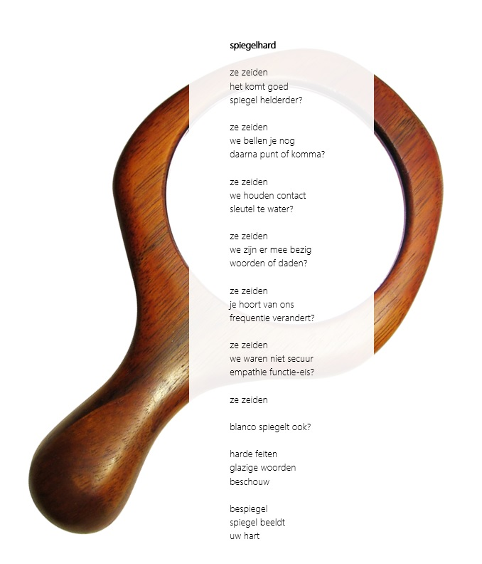 15-gedicht-spiegelhard-marcel-zandee-0117
